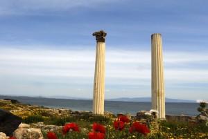 Sardinia again : i Fenici e Stefano Rocca
