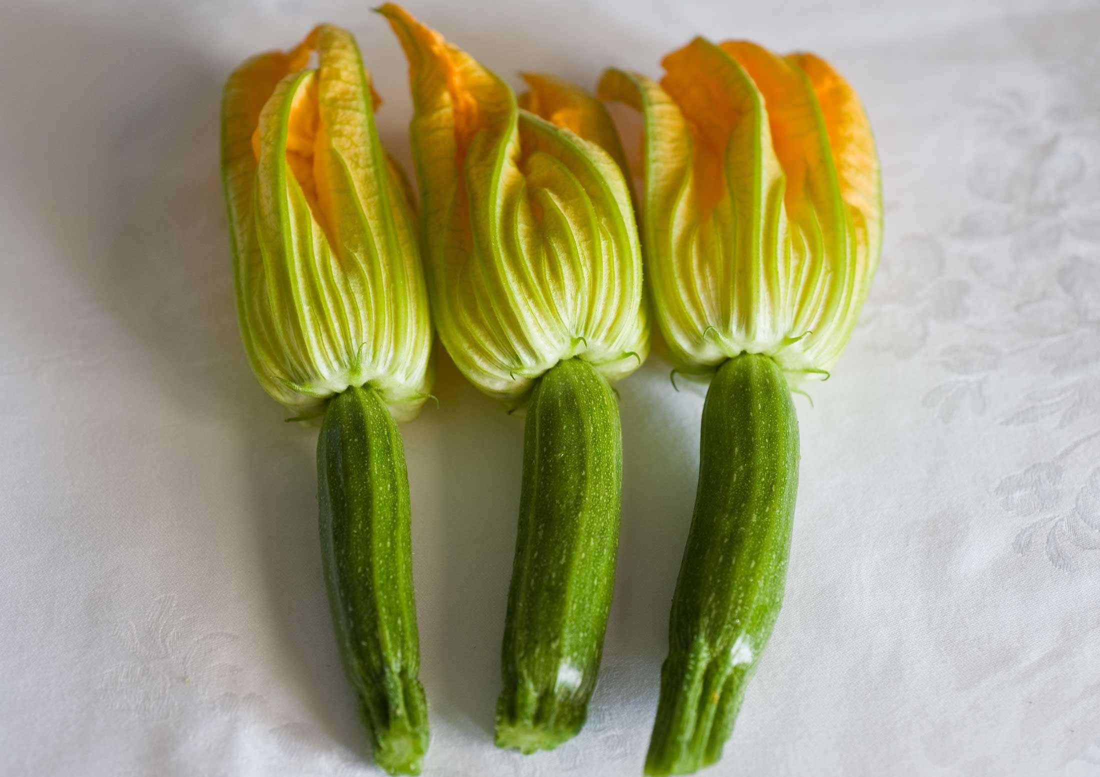 Tartare di zucchine con fragole e cacioricotta maril for La zucchina