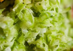 zest-zucchine