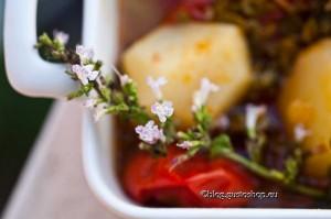 Mentucciata : minestra contadina